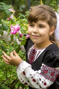 Free Girl In A Bush Of Roses Royalty Free Stock Image - 31417446