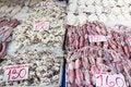 Free Fresh Squid Stock Image - 31421881