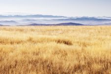 Free Scenery - Highland Grass Royalty Free Stock Images - 31427439