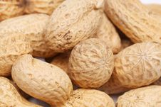 Free Background Of Big Peanuts Royalty Free Stock Images - 31428379