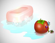 Free Washing A Tomato Stock Image - 31431261