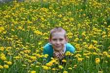 Free The Boy On A Clearing From Dandelions Stock Photography - 31435802