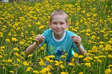 The Boy On A Clearing From Dandelions Royalty Free Stock Images