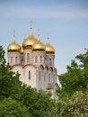 Free Orthodox Church Royalty Free Stock Photography - 31444647