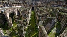 Free In The Colosseum On A Sunny Day Royalty Free Stock Photography - 31442197