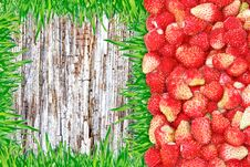 Frame Of Strawberries And Grass And Wooden Background. Stock Image