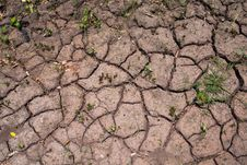 Free Dehydrated Soil Texture Background Stock Images - 31466134