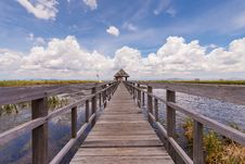 Wooden Path Way Elevated Over Swamp Field Stock Photography