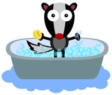 Free Skunk S Bath Time Royalty Free Stock Image - 31478326