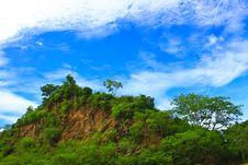 Free Rocks And Trees Stock Photo - 31478350