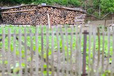 Free Cut Wood Storage Royalty Free Stock Photos - 31480268