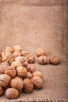 Free Walnuts Close-up On The Sackcloth Background Royalty Free Stock Photography - 31481497