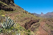 Free Island Of La Gomera, Palm Valley Stock Photography - 31486162