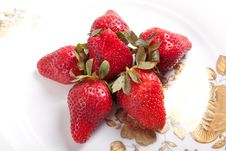 Free Strawberry Royalty Free Stock Photography - 31497767