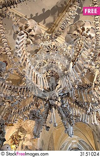 Human sculls Stock Photo