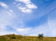 Free Yellow Field And Blue Sky Stock Photo - 3150450
