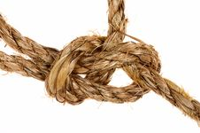 Free Bowline Knot On Palm Cord Stock Photos - 3151813