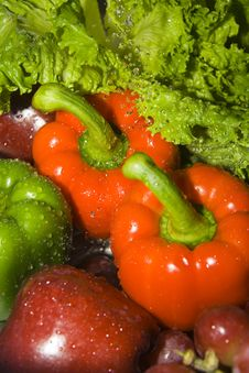 Free Peppers Stock Photos - 3152013