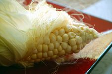Free Corn On The Cob Royalty Free Stock Photo - 3153855