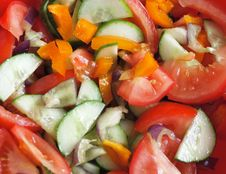 Free Salad Stock Photo - 3154720