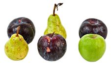 Free Plums, Pear And Apple Royalty Free Stock Photos - 3157128