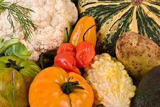 Free Miscellaneous Vegetables Close Stock Image - 3157141