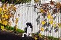 Free Autumn Season Stock Photography - 31517952