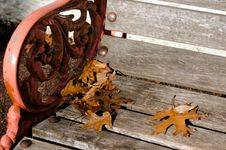 Free Autumn Season Stock Images - 31517964