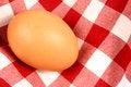 Free Egg Stock Image - 31536211