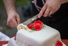 Free Cutting The Wedding Cake Stock Images - 31531244