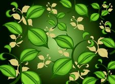 Free Green Leaf Pattern Stock Photography - 31534442