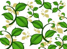 Free Green Leaf Pattern Royalty Free Stock Images - 31534499
