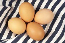 Free Eggs Royalty Free Stock Image - 31536226