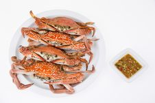 Steamed Crabs With Seafood Sauce Stock Images