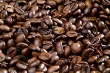 Free Coffee Royalty Free Stock Image - 31543616