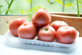 Free Tomatoes Stock Photography - 31553832