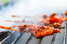Free Grilled Chicken Stock Images - 31553264