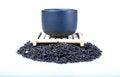 Free Black Tea Stock Photos - 31569343