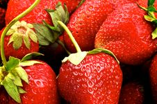 Free Strawberries Background Royalty Free Stock Photography - 31573537