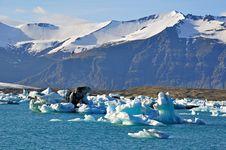 Free Blue Icelandic Gracier Stock Photography - 31575992