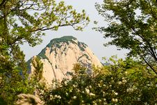Free The Forest_Hua Mountain_shanxi Royalty Free Stock Images - 31578679