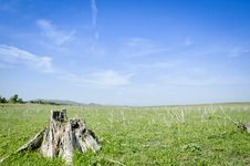 Free Green Meadow Under Blue Stock Photo - 31589400