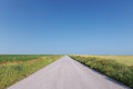 Free Empty Road Through Agricultural Land Stock Photos - 31591353