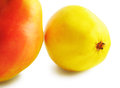 Free Two Yellow-red Pears Royalty Free Stock Photos - 31594528
