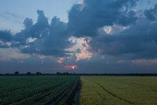 Free Rising Sun Over Agricultural Land Royalty Free Stock Photography - 31591997