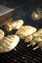 Free Chicken And Pork Barbeque Stock Photos - 3169573