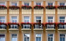 Free Row Of Windows Royalty Free Stock Photo - 3160125