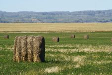 Free Field Of Round Bales Of Hay Royalty Free Stock Photo - 3161405