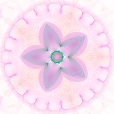 Star Flower Against White Royalty Free Stock Images
