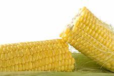 Free Corn Royalty Free Stock Photos - 3162528